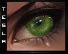 ⚜ Focus - Leaf - Eyes