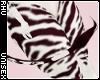 . Tiba | Tail
