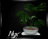 {N} :Lani:  Plant