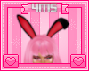 4MSe Bunny :3