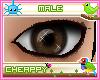 Dark Brown Male Eyes