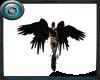 MRW|Quad Angel Wings B