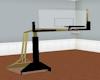 Black/Gold Basketball