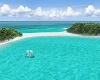 BluWolf Paradise