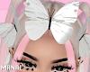 head butterfly