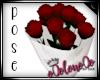 .L. Red Rose Pose