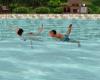 Couple Animated Swim