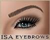 (ISA)KD Brows 1 -D Brown