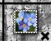 Forget Me Not stamp