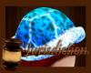 ⌡ Sea Turtle Club