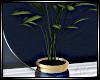 .MODERN FLOOR PLANT.