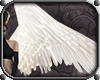 Valkyrie Wings *White*
