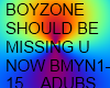 SHOULD BE MISSING U DUB