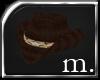 =M= Stetson [brown]
