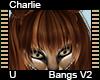 Charlie Bangs V2