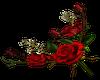 Red Rose- R