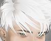 shephard white