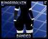 Rimmed Body Bands .:FM:.