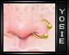 ~Y~Gold Nose Piercing