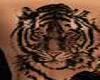(P)big cat tatoo