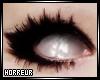 [H] White Eye