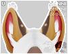 . Klothys   ears