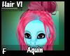 Aquin Hair V1 F