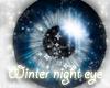 winter night eye