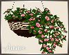 Hanging Flower Pot 2