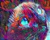 Art Cat Color