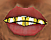 [NB] OPEN FACE GRILL