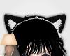 CatMaid ~Black Ears
