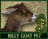 Billy Goat Brown