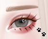✧ DAWN brown lashes