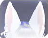 Foxy | Ears 5