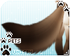 [Pets] Kimi | tail v2