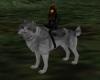 !!Master Wolf!!
