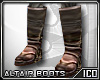 ICO Altairs Boots