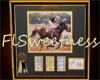 FLS Horse II