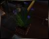 Deco Planter + Lights
