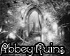 ~Abbey Ruins~