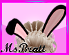 {B} Easter Bunny Hears