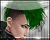 {E-Green Hawk