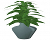 Victorian Potted Plant 4