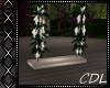 !C* E Animated Swing
