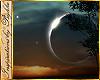 I~Eclipse