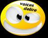VOICES DELIRE