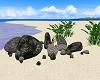 Island Rocks