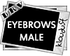 male eyebrows