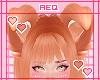 AQ | Carrot Puppy